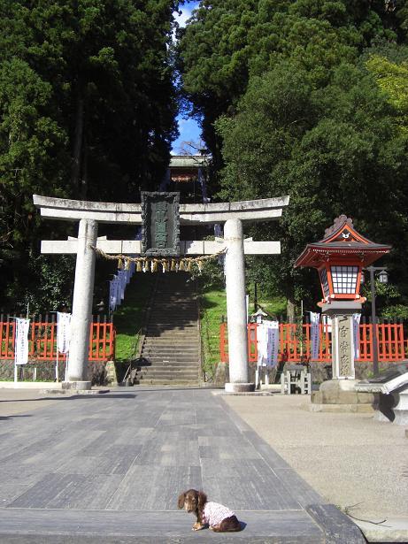 龍君塩釜神社1