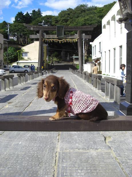 龍君塩釜神社3