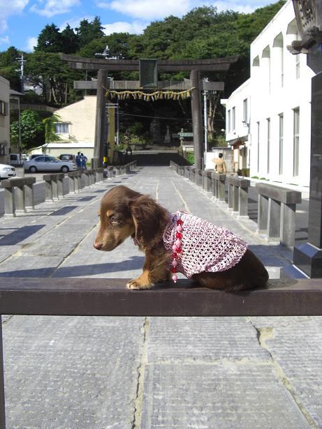 龍君塩釜神社4