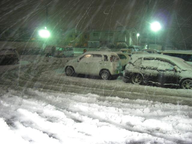 大雪(1.31土)1