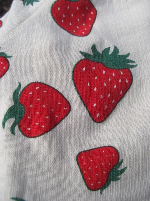 苺とんみさん2