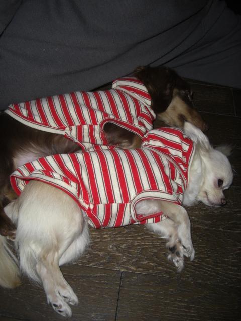 PAPAと寝る1