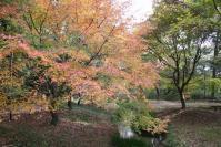 京都2011-糺の森1