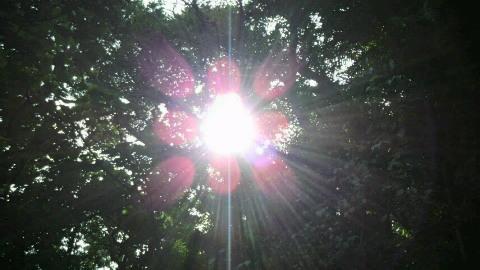 斎場太陽1
