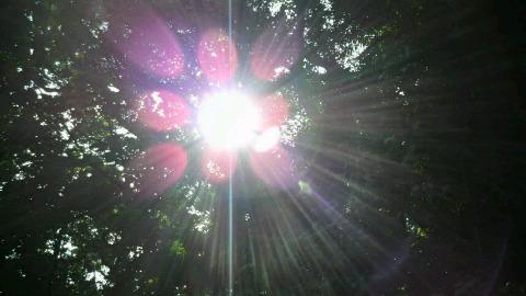 斎場太陽2