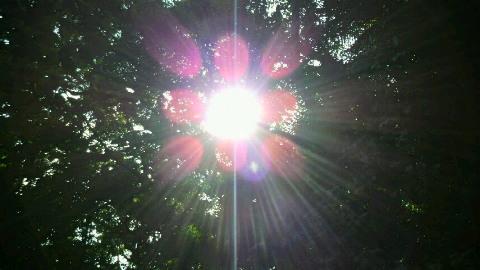 斎場太陽3