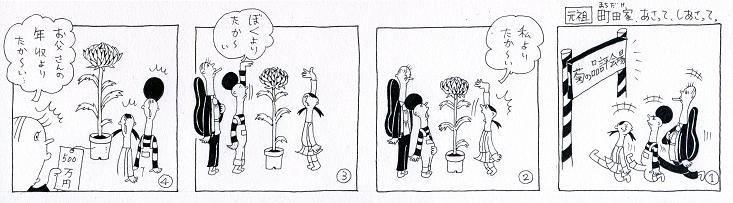 菊の品評会