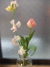 もらったお花