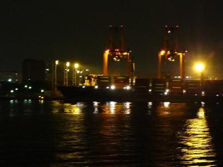 2011.11.15夜景5