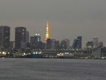 2011.11.15夜景1