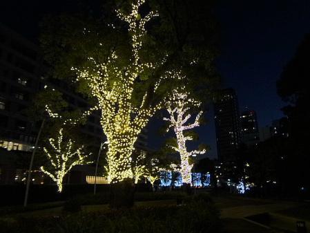 2011.11.21ミッドタウン9
