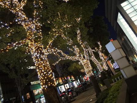 2011.11.21ミッドタウン6