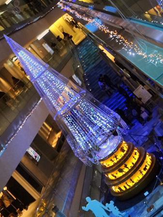 2011.12.21ツリー1