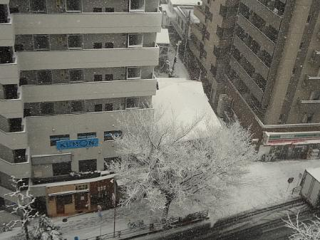 2012.2.29雪2