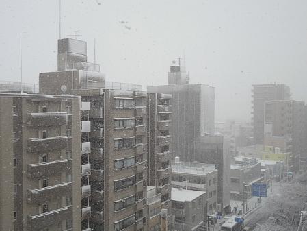 2012.2.29雪1