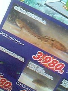 20060324210936