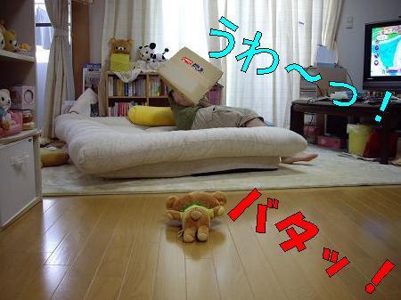 20080913-6.jpg