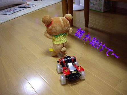 20081108-7.jpg
