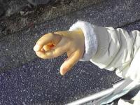20090204チビの手
