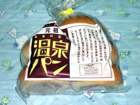 20090118_PAN