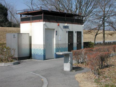20090217_kinugawa03