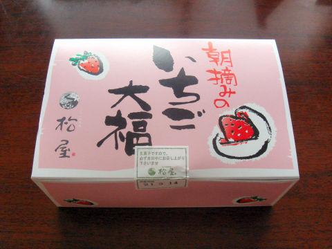 20090314_Ichigo_04