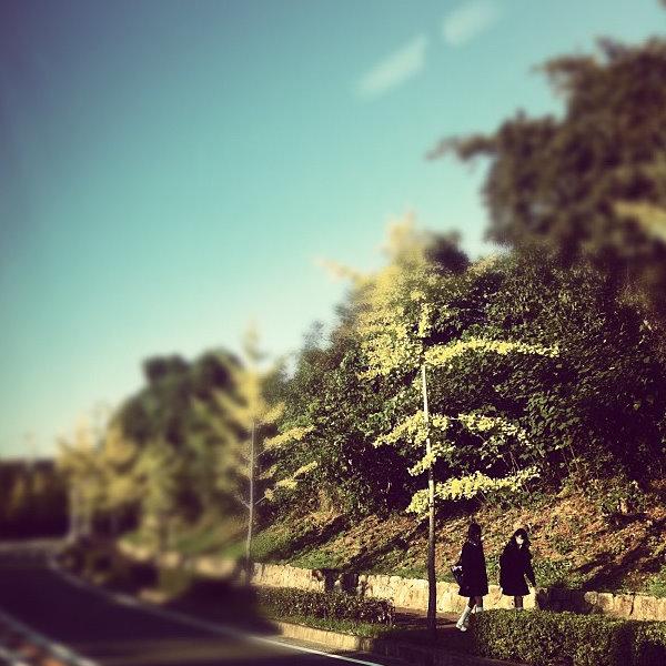 ■ 秋の風景