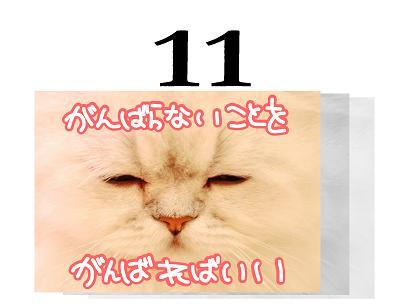 11s_20090511193223.jpg