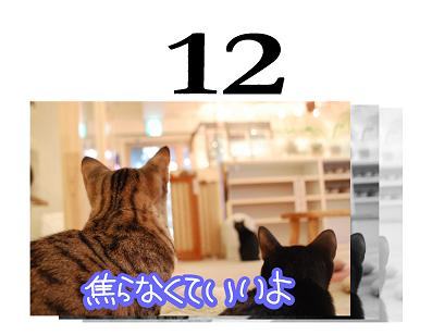 12s.jpg