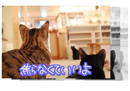 12ss_20090825201605.jpg