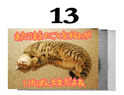 13s_20090613130914.jpg