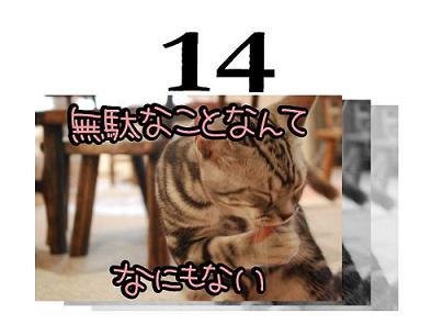 14s.jpg