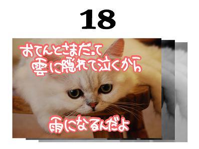 18s_20090417162334.jpg