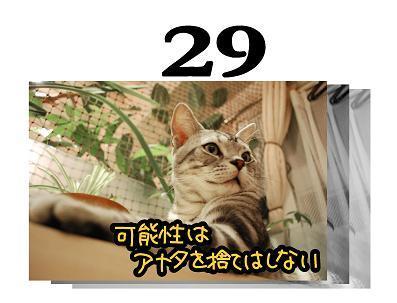 コピー ~ 29s