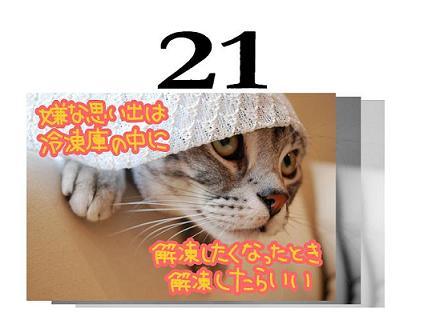 21s.jpg