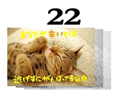 22s_20090522112855.jpg