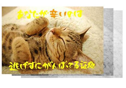 22ss_20090825202306.jpg
