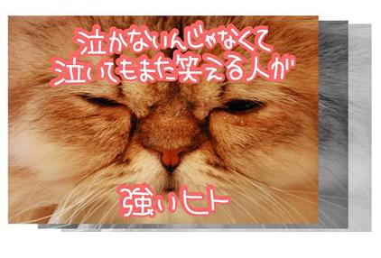 23ss_20090825202300.jpg