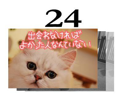 24s_20090623111653.jpg