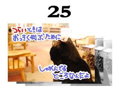 25s_20090625115655.jpg