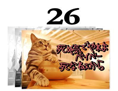 26s_20090527105607.jpg