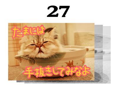 27s.jpg