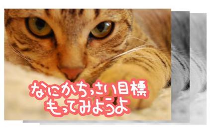 28ss_20090825202554.jpg