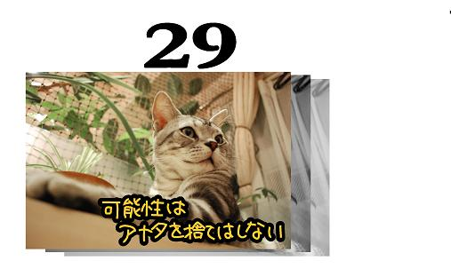 29s.jpg