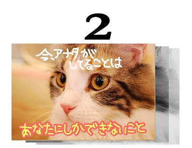 2s_20090602093755.jpg