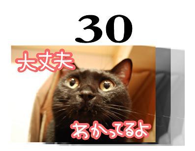 30s.jpg