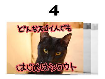 4s_20090404153816.jpg