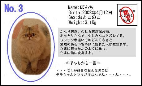 HS_20090220180159.jpg