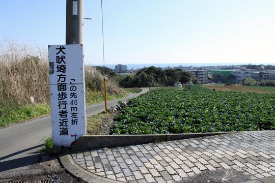 20090125_inubo-05.jpg