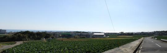 20090125_inubo-06.jpg